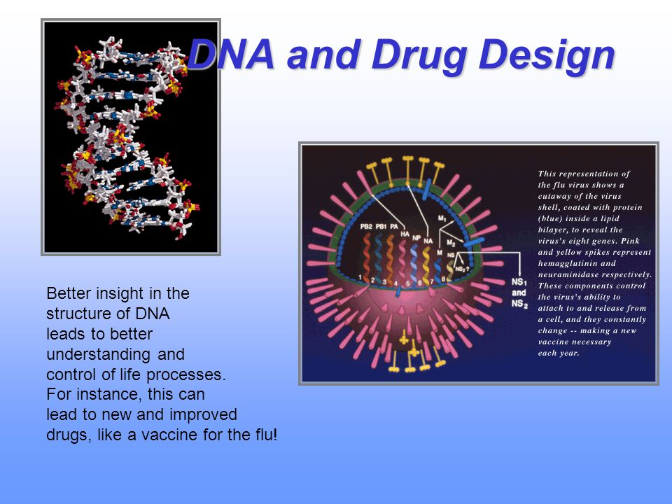 DNA and Drug Design Better insight in the structure of DNA leads to better understanding and control of life processes.