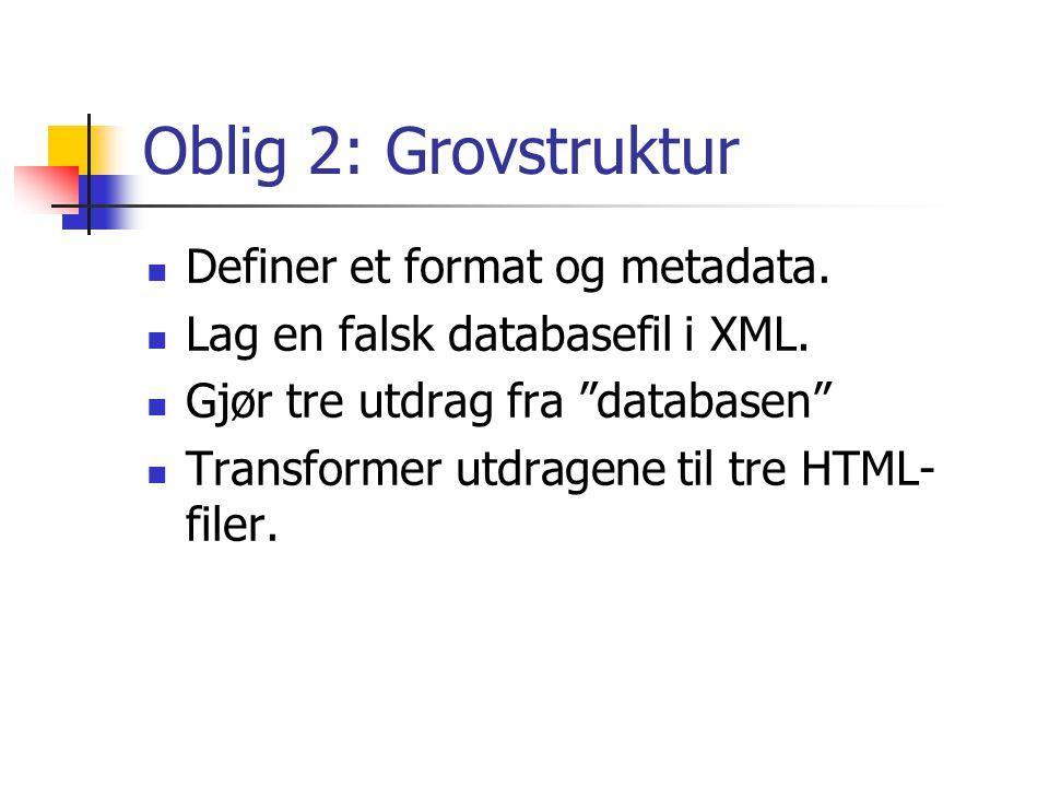 Oblig 2: Grovstruktur Definer et format og metadata.