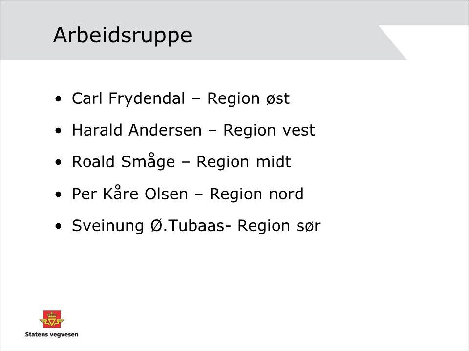 Arbeidsruppe Carl Frydendal – Region øst Harald Andersen – Region vest Roald Småge – Region midt Per Kåre Olsen – Region nord Sveinung Ø.Tubaas- Region sør