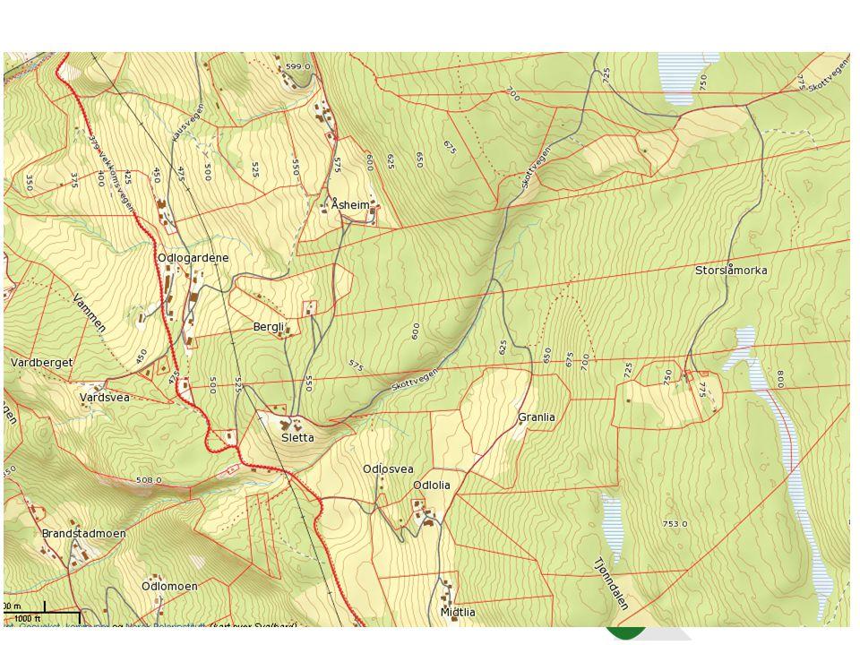 Hovedutfordringer Eiendomsstruktur, egentlig -Størrelse og -arrondering Men for skogbruket.