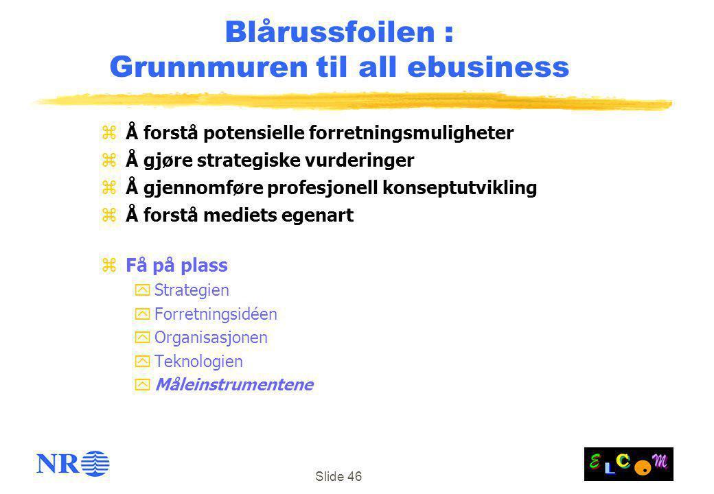 Slide 46 Blårussfoilen : Grunnmuren til all ebusiness zÅ forstå potensielle forretningsmuligheter zÅ gjøre strategiske vurderinger zÅ gjennomføre prof