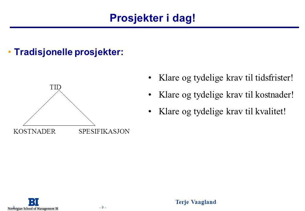 - 10 - Terje Vaagland - 10 - Prosjekter i dag.