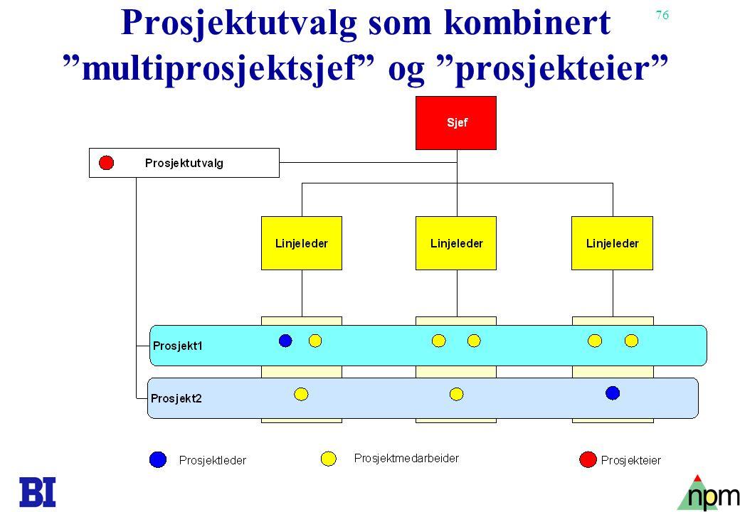 """76 Prosjektutvalg som kombinert """"multiprosjektsjef"""" og """"prosjekteier"""""""