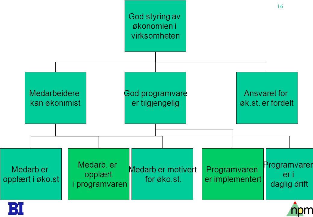 16 God styring av økonomien i virksomheten Ansvaret for øk.st. er fordelt God programvare er tilgjengelig Medarbeidere kan økonimist Programvaren er i