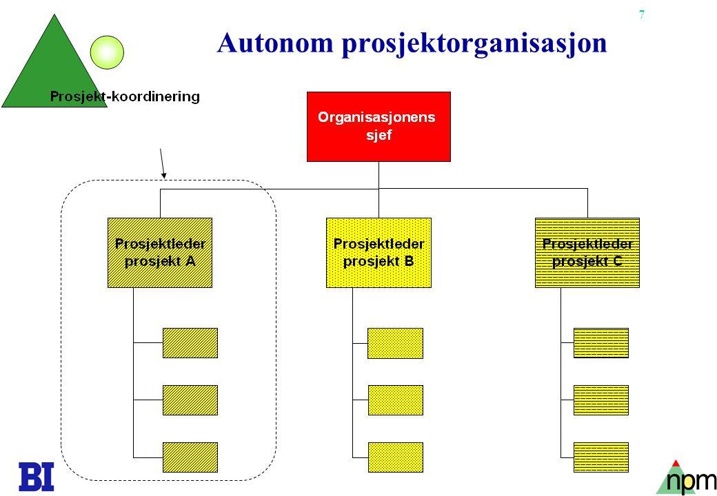 7 Autonom prosjektorganisasjon