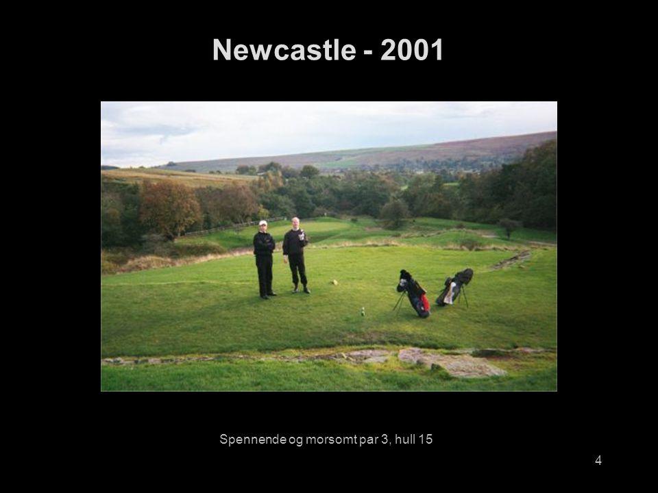4 Spennende og morsomt par 3, hull 15 Newcastle - 2001