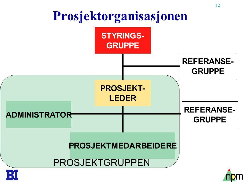 12 Prosjektorganisasjonen REFERANSE- GRUPPE ADMINISTRATOR STYRINGS- GRUPPE PROSJEKT- LEDER PROSJEKTMEDARBEIDERE REFERANSE- GRUPPE PROSJEKTGRUPPEN