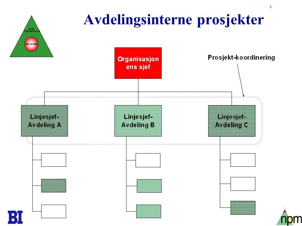 4 Avdelingsinterne prosjekter