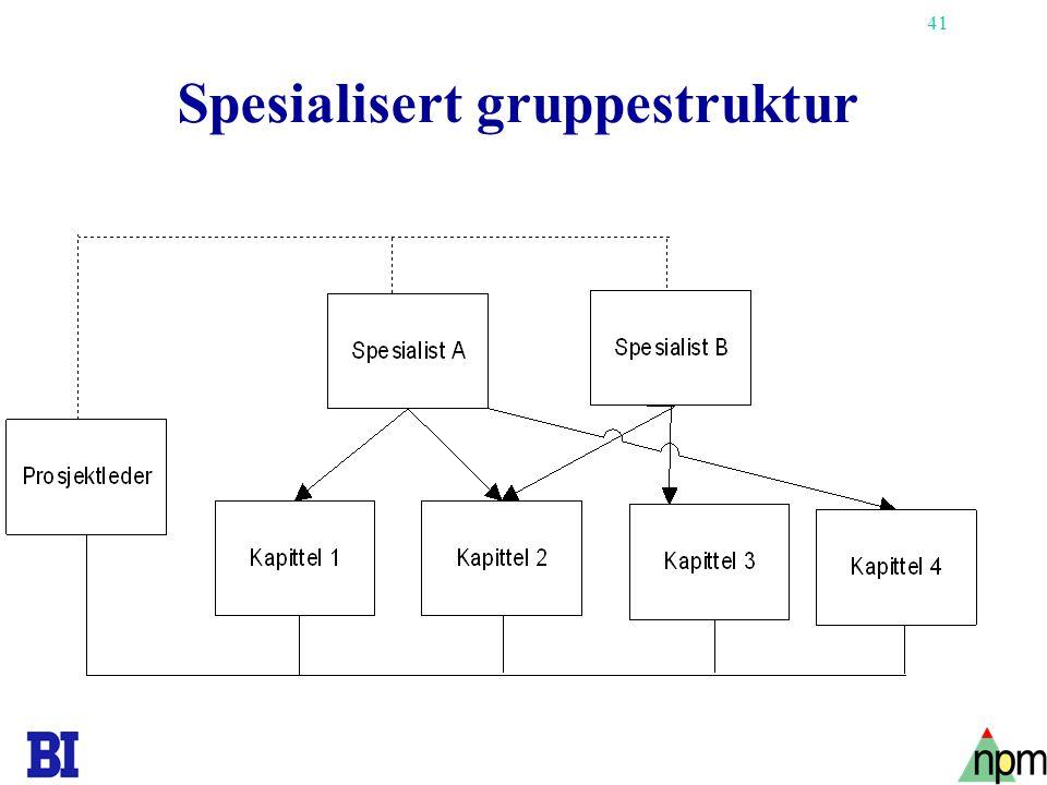 41 Spesialisert gruppestruktur
