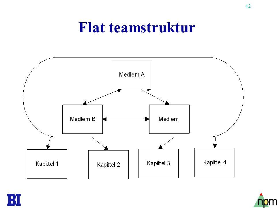 42 Flat teamstruktur