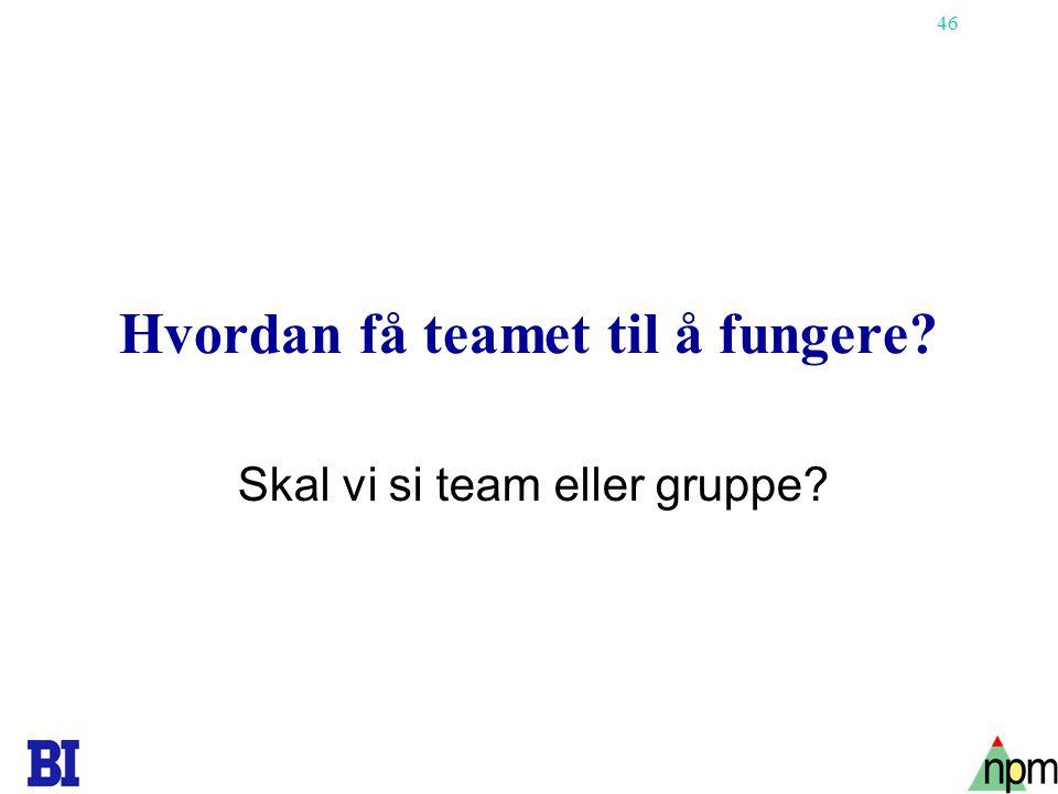 46 Hvordan få teamet til å fungere? Skal vi si team eller gruppe?