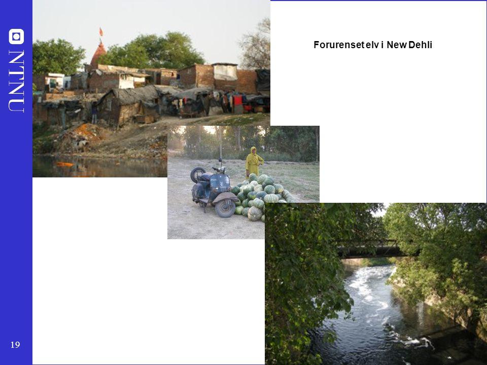 19 Forurenset elv i New Dehli