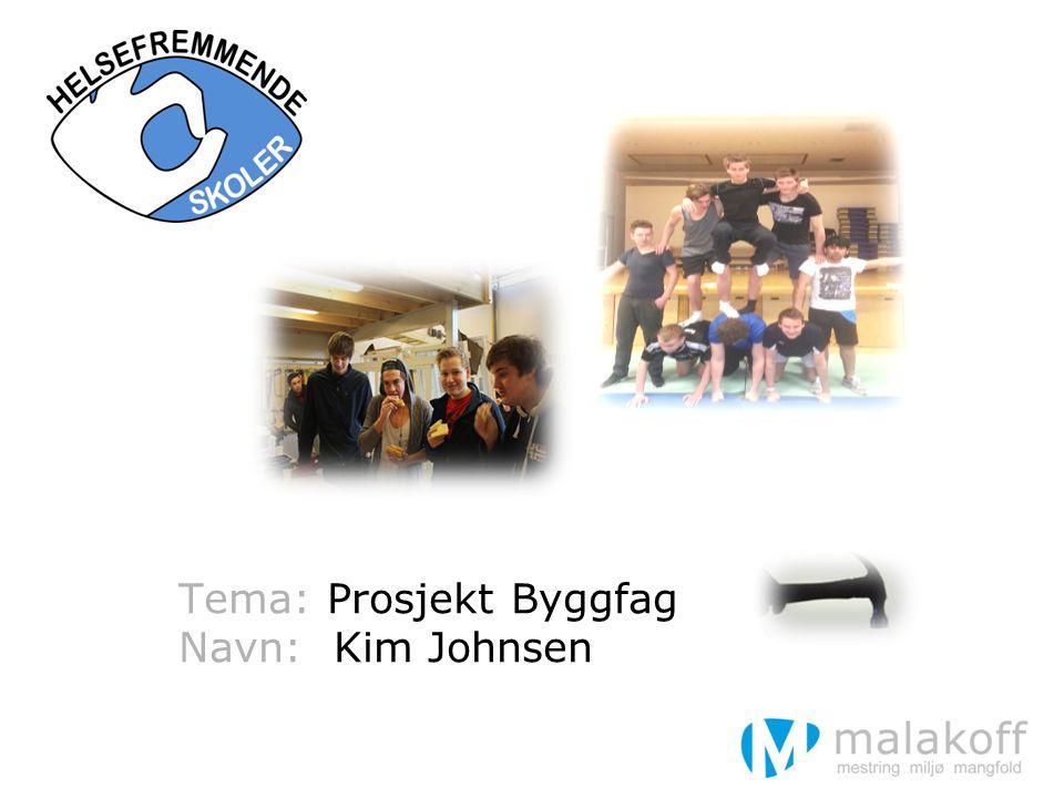Hva er Prosjekt Byggfag.