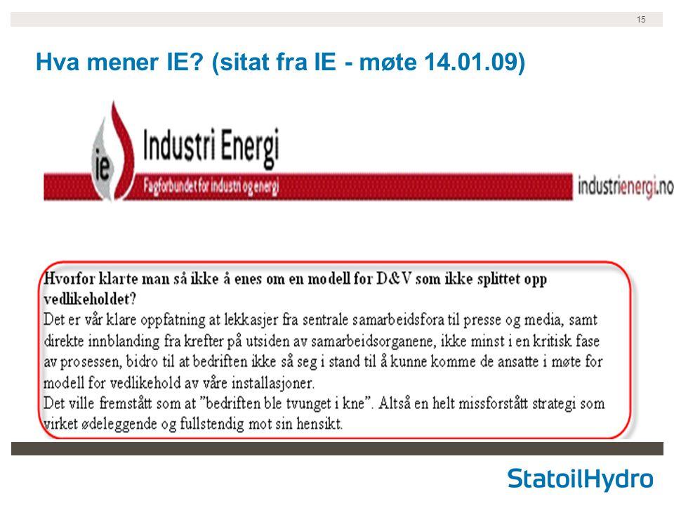 15 Hva mener IE (sitat fra IE - møte 14.01.09)