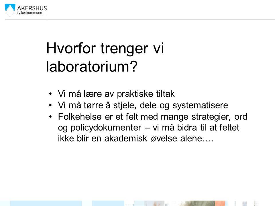 Hvorfor trenger vi laboratorium.