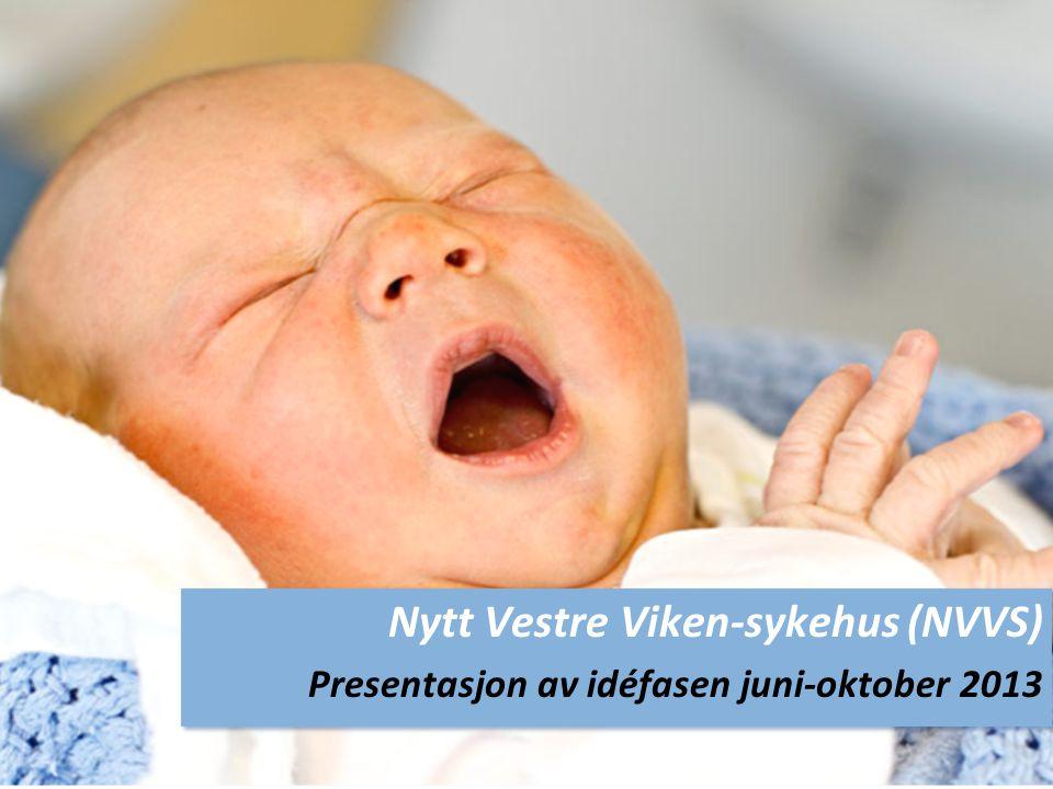 Nytt Vestre Viken-sykehus (NVVS) Presentasjon av idéfasen juni-oktober 2013 Nytt Vestre Viken-sykehus (NVVS) Presentasjon av idéfasen juni-oktober 2013