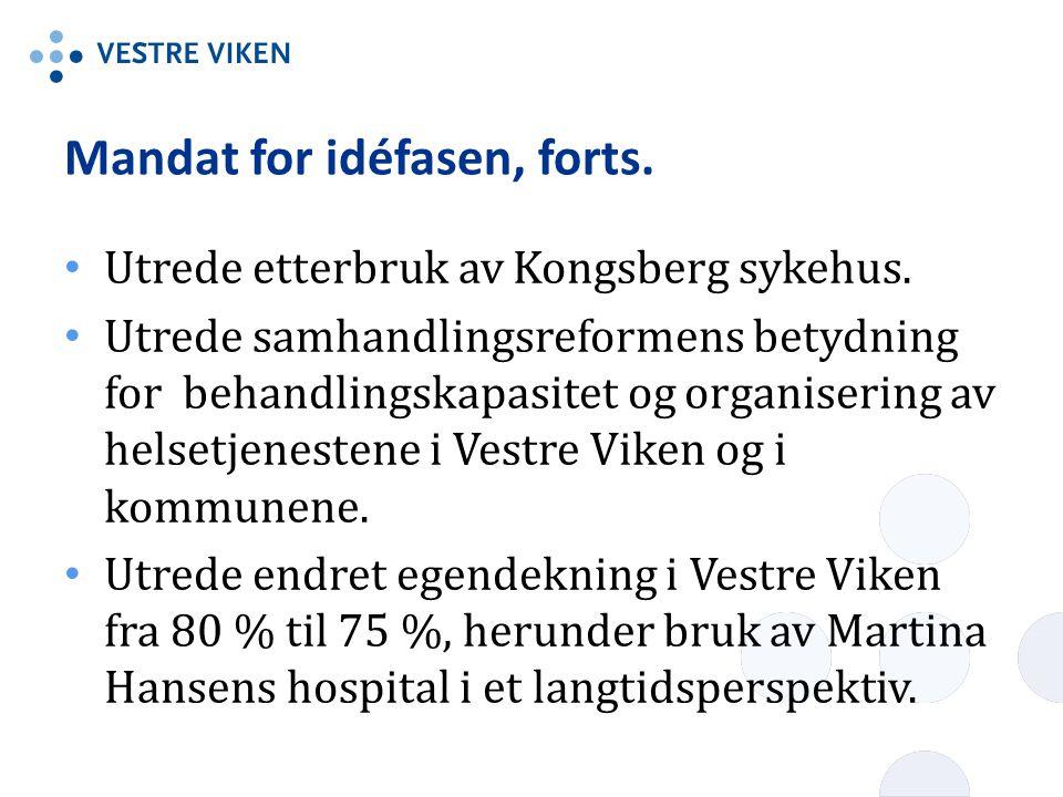 Mandat for idéfasen, forts.Utrede etterbruk av Kongsberg sykehus.