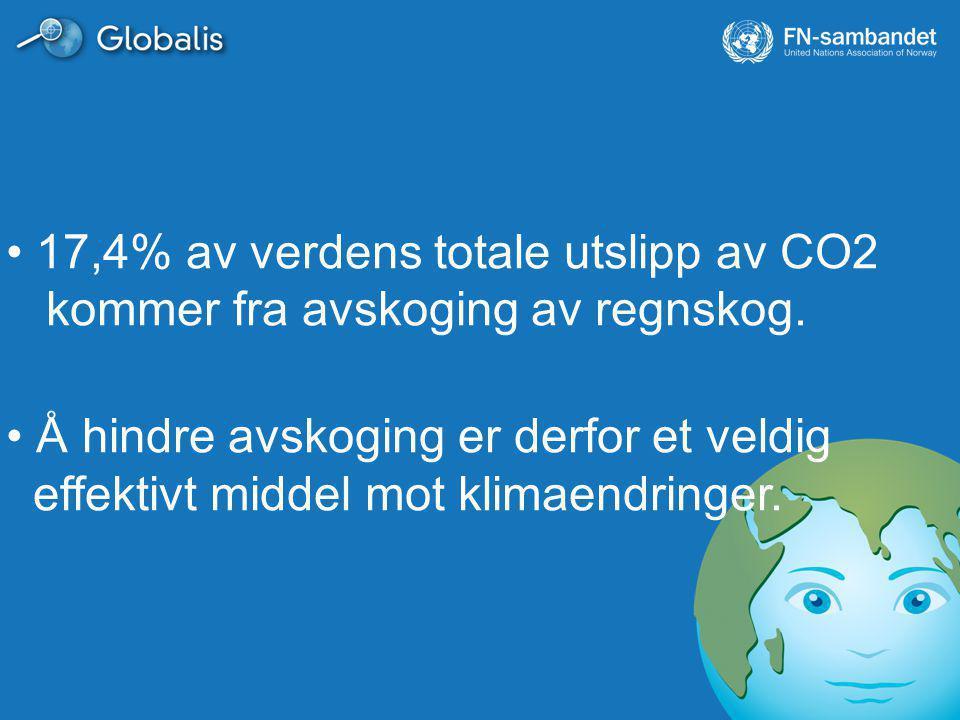 17,4% av verdens totale utslipp av CO2 kommer fra avskoging av regnskog. Å hindre avskoging er derfor et veldig effektivt middel mot klimaendringer.