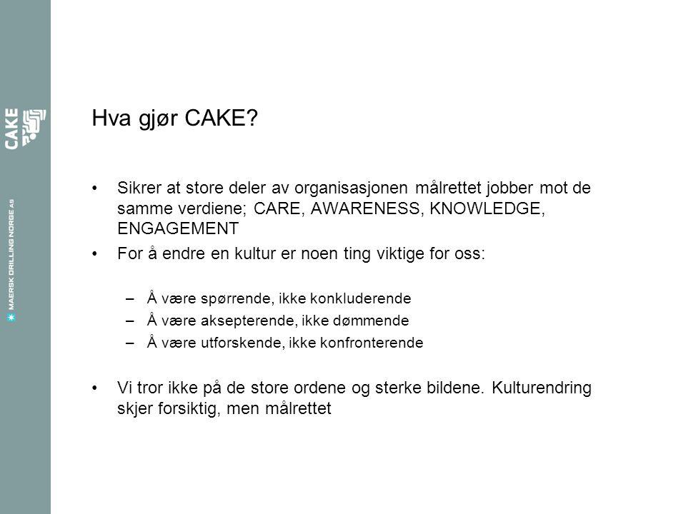 Hva gjør CAKE.