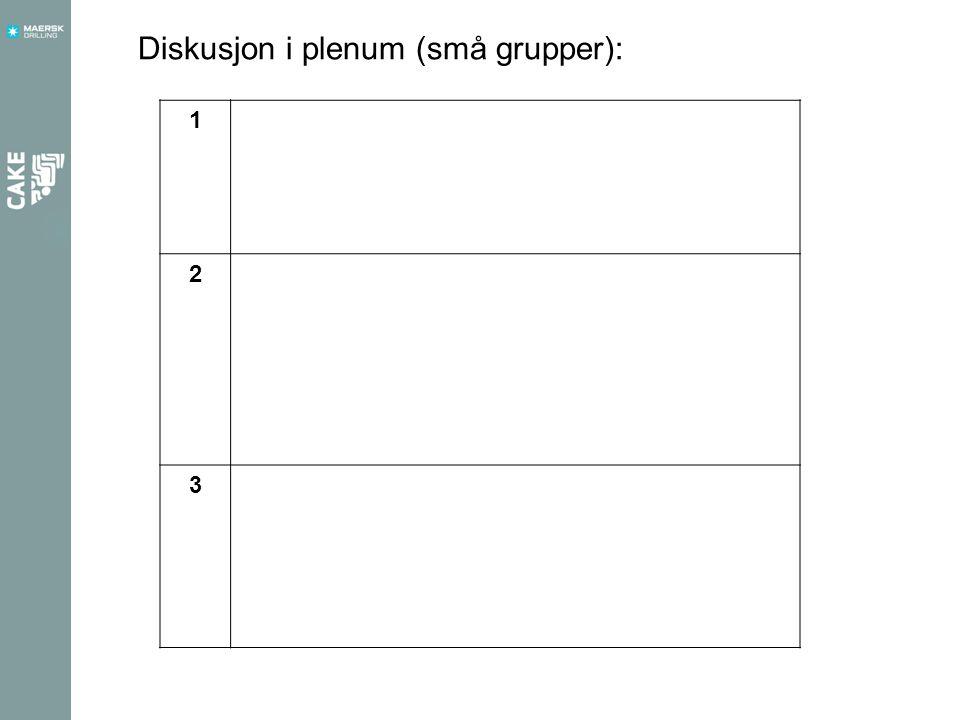 1 2 3 Diskusjon i plenum (små grupper):