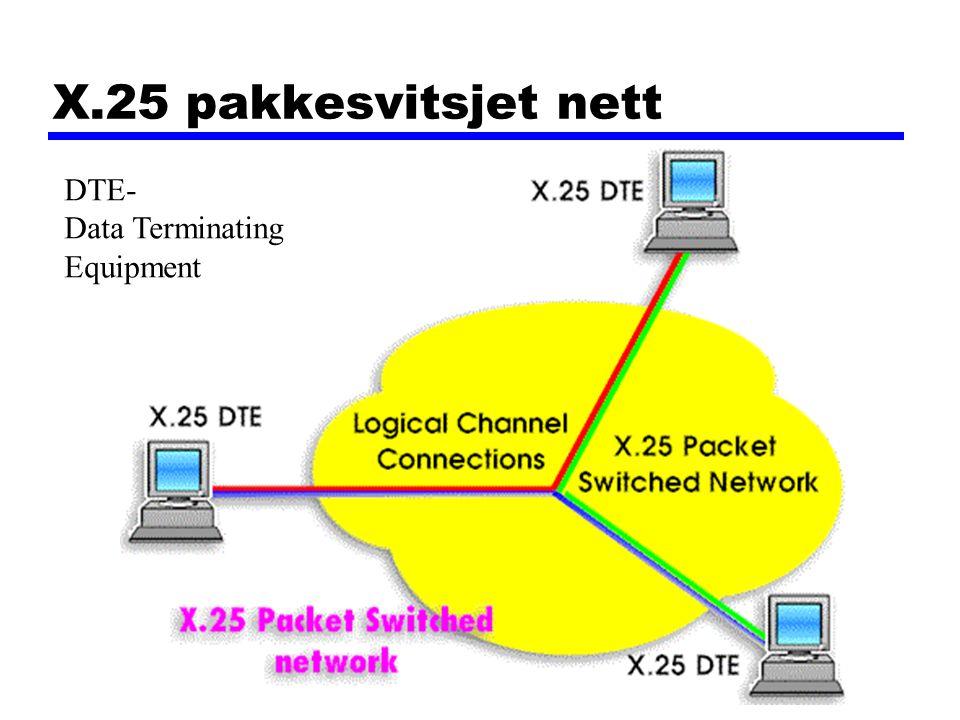 X.25 pakkesvitsjet nett DTE- Data Terminating Equipment