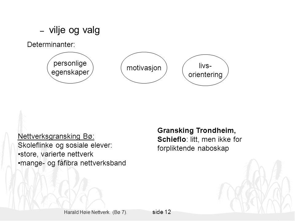 Harald Høie Nettverk. (Bø 7). side 12 – vilje og valg personlige egenskaper motivasjon livs- orientering Determinanter: Gransking Trondheim, Schieflo: