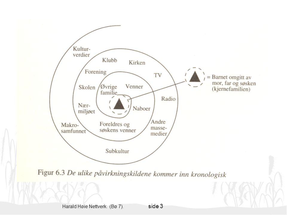 Harald Høie Nettverk. (Bø 7). side 3