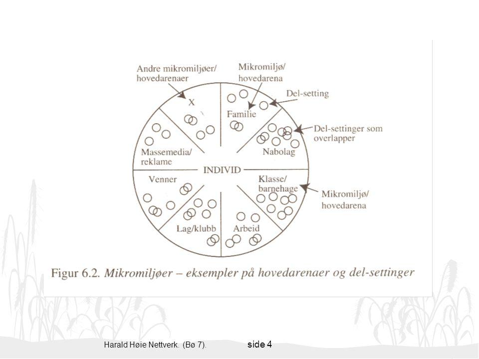 Harald Høie Nettverk. (Bø 7). side 4