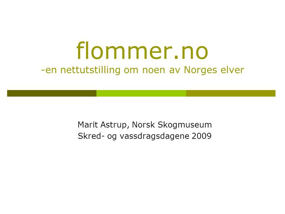 flommer.no -en nettutstilling om noen av Norges elver Marit Astrup, Norsk Skogmuseum Skred- og vassdragsdagene 2009