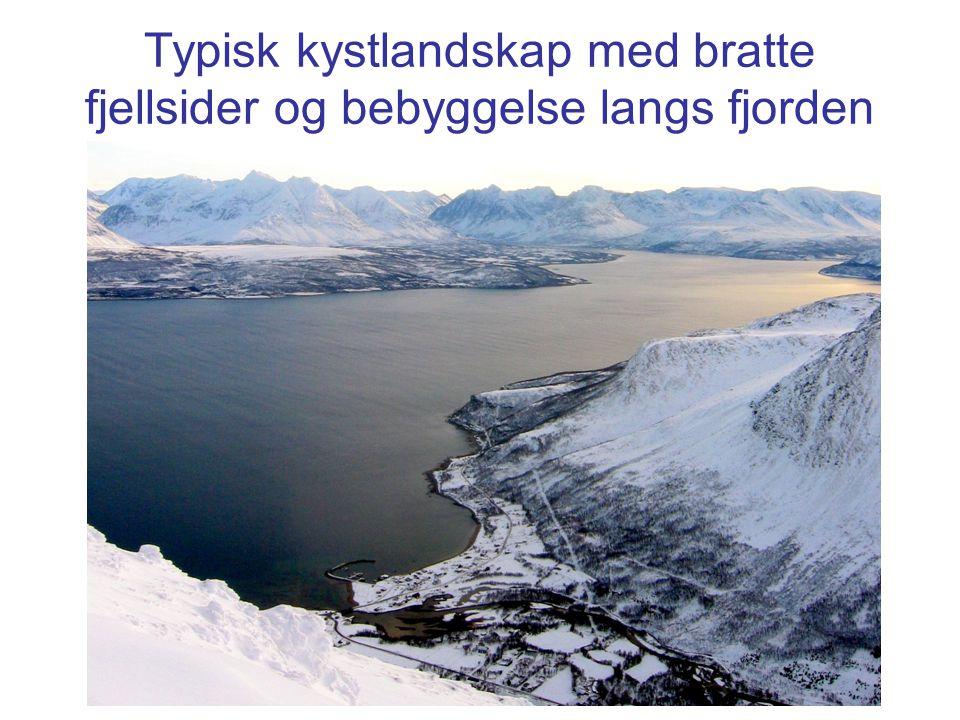Typisk kystlandskap med bratte fjellsider og bebyggelse langs fjorden