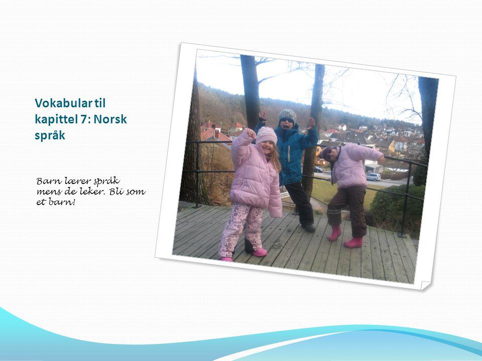 Vokabular til kapittel 7: Norsk språk Barn lærer språk mens de leker. Bli som et barn!