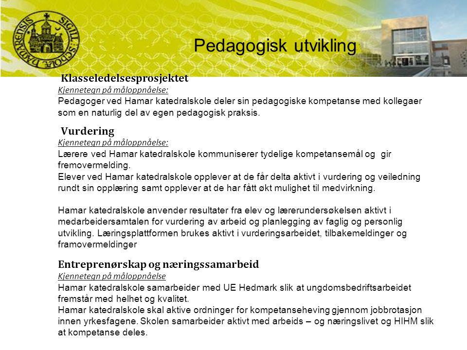 Klasseledelsesprosjektet Kjennetegn på måloppnåelse: Pedagoger ved Hamar katedralskole deler sin pedagogiske kompetanse med kollegaer som en naturlig del av egen pedagogisk praksis.