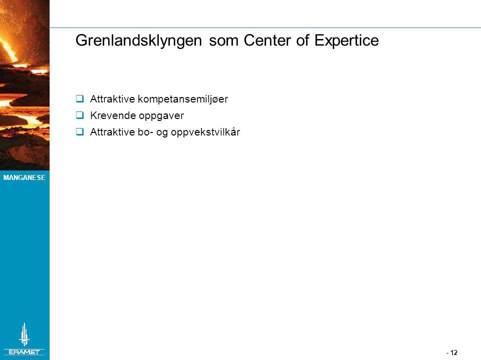 MANGANESE - 12 Grenlandsklyngen som Center of Expertice  Attraktive kompetansemiljøer  Krevende oppgaver  Attraktive bo- og oppvekstvilkår