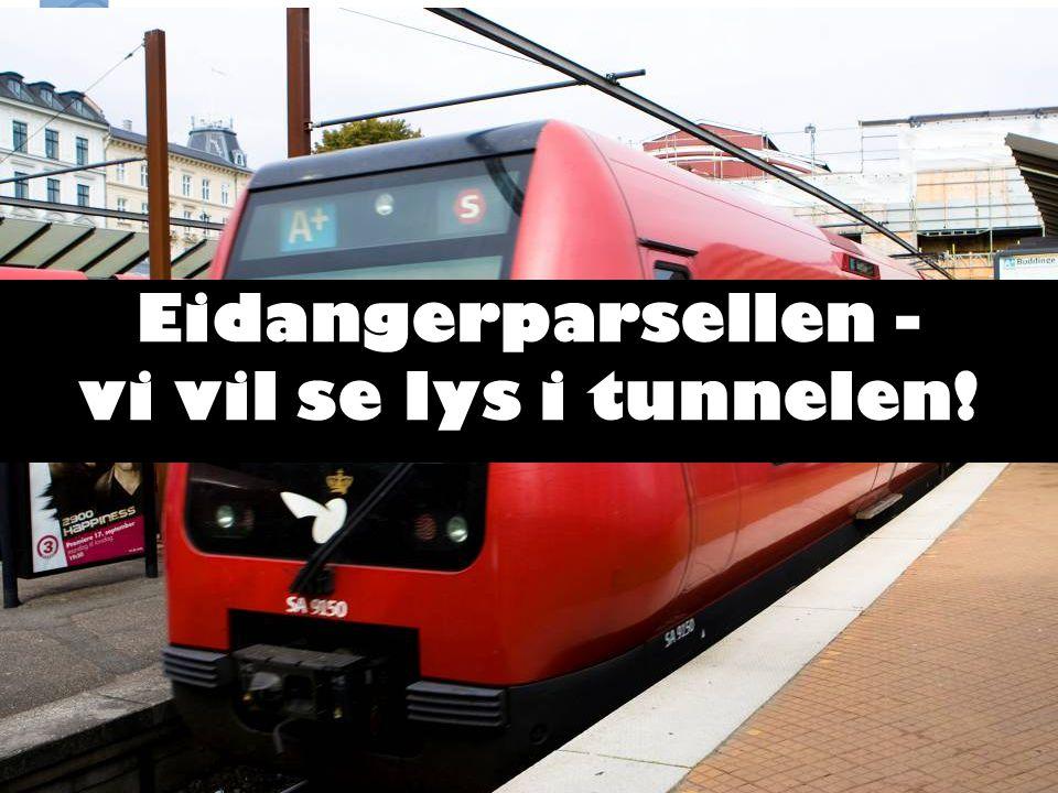 Eidangerparsellen - vi vil se lys i tunnelen!