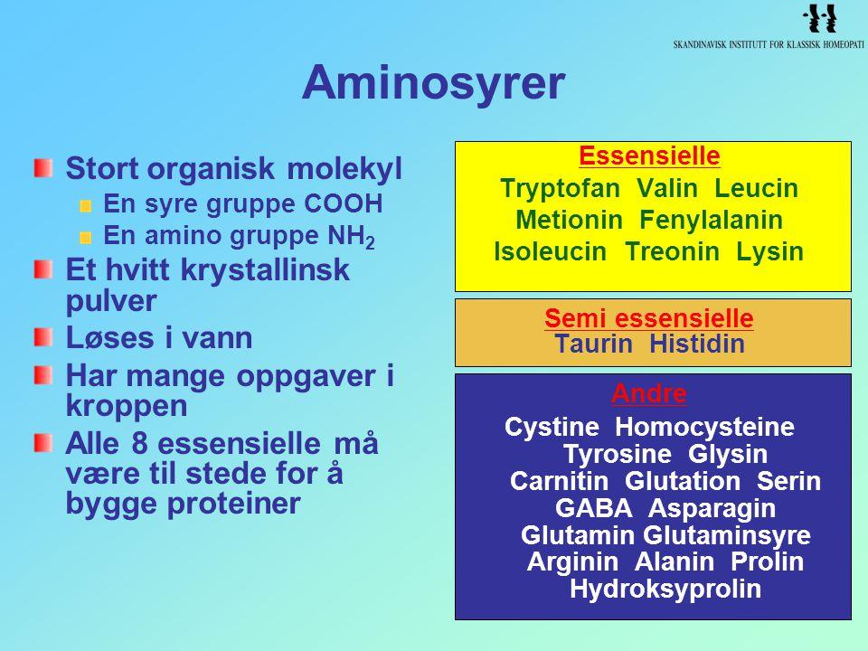 Aminosyrer Stort organisk molekyl En syre gruppe COOH En amino gruppe NH 2 Et hvitt krystallinsk pulver Løses i vann Har mange oppgaver i kroppen Alle