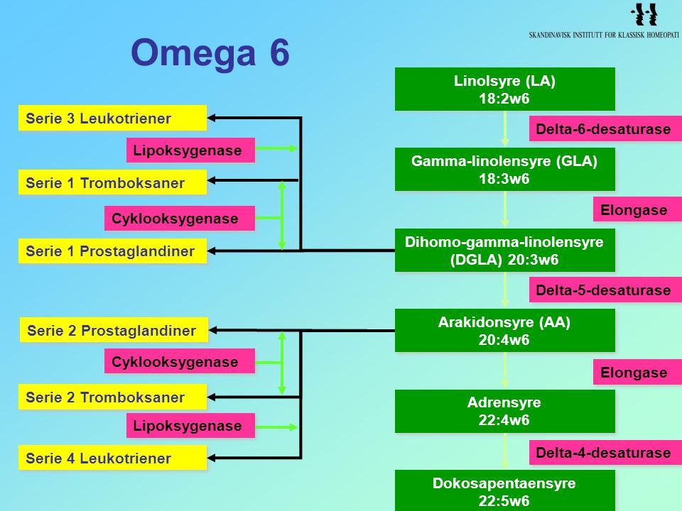 Omega 6 Serie 1 Tromboksaner Serie 3 Leukotriener Serie 1 Prostaglandiner Serie 2 Prostaglandiner Serie 2 Tromboksaner Serie 4 Leukotriener Lipoksygen