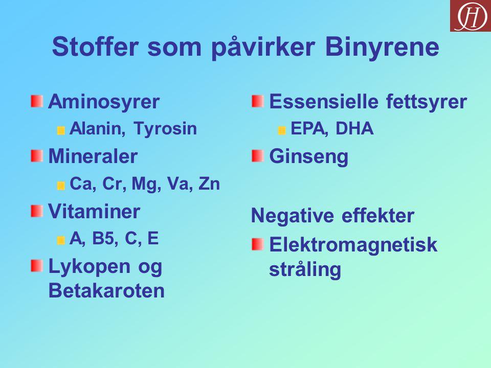 Stoffer som påvirker Binyrene Aminosyrer Alanin, Tyrosin Mineraler Ca, Cr, Mg, Va, Zn Vitaminer A, B5, C, E Lykopen og Betakaroten Essensielle fettsyr