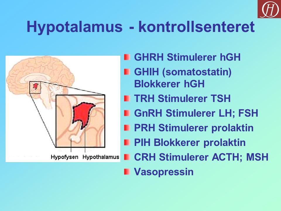 Hypotalamus - kontrollsenteret GHRH Stimulerer hGH GHIH (somatostatin) Blokkerer hGH TRH Stimulerer TSH GnRH Stimulerer LH; FSH PRH Stimulerer prolakt