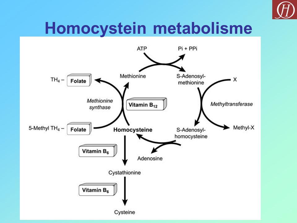 Hjerte anfall og slag Ødeleggelse av åreveggene + Levring av blod Frie oksygen radikaler Folat Homocystein B6B6 B 12 Cystein (ufarlig) Metionin (ufarlig) Stress Røyking Bearbeidet mat ved hjerte kar Betydningen av folat, B 6 og B 12