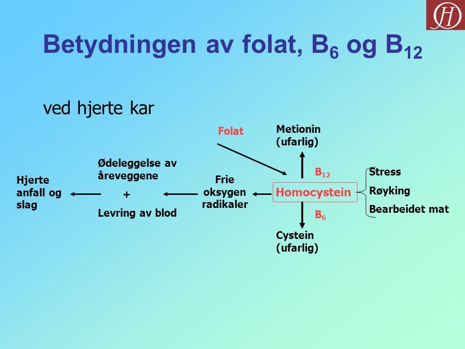 Hjerte anfall og slag Ødeleggelse av åreveggene + Levring av blod Frie oksygen radikaler Folat Homocystein B6B6 B 12 Cystein (ufarlig) Metionin (ufarl