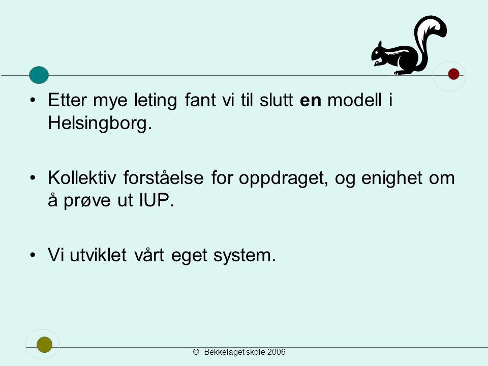 © Bekkelaget skole 2006 Stegoversikt