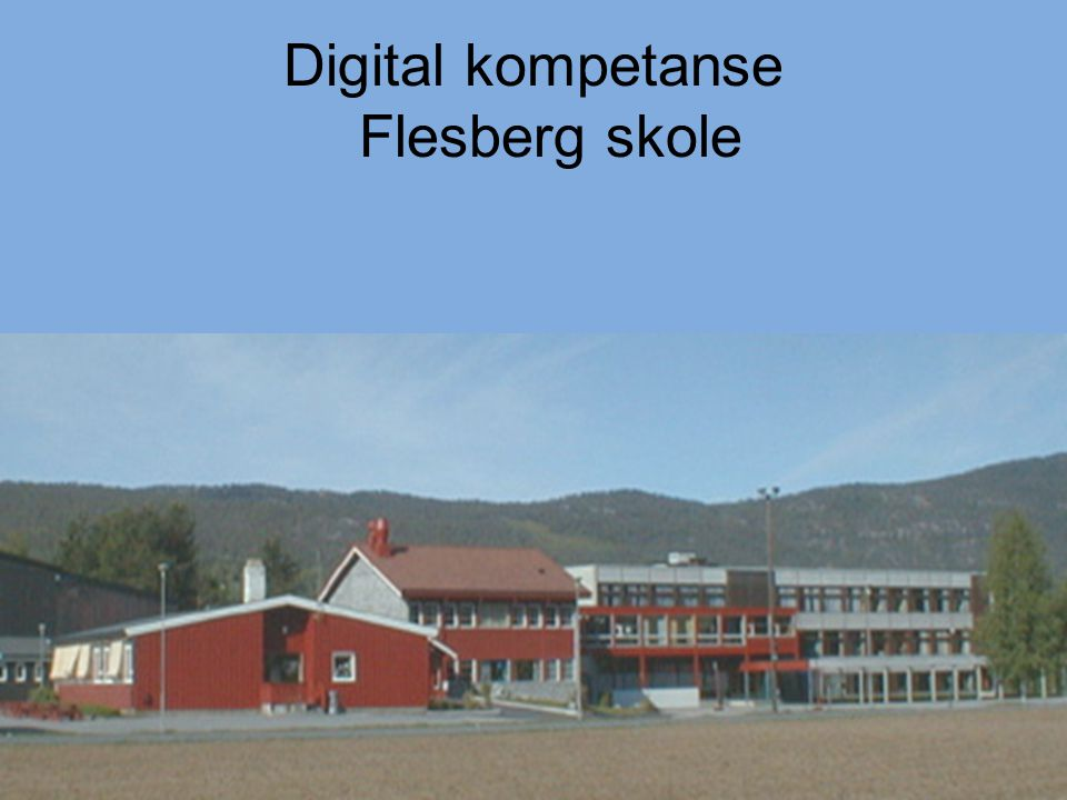 Digital kompetanse Flesberg skole