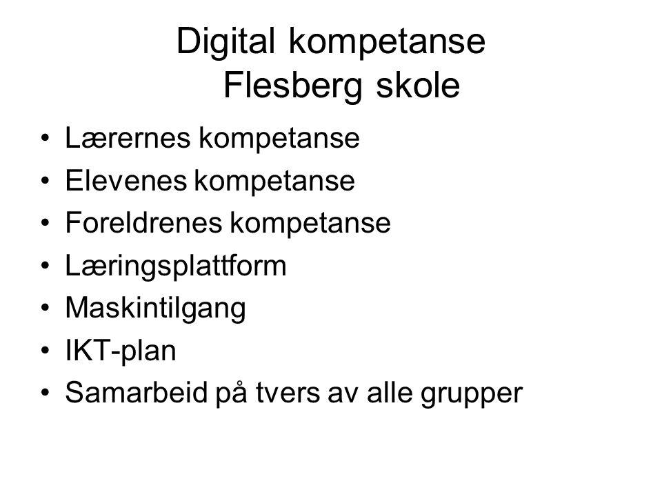 Lærernes kompetanse Elevenes kompetanse Foreldrenes kompetanse Læringsplattform Maskintilgang IKT-plan Samarbeid på tvers av alle grupper Digital kompetanse Flesberg skole