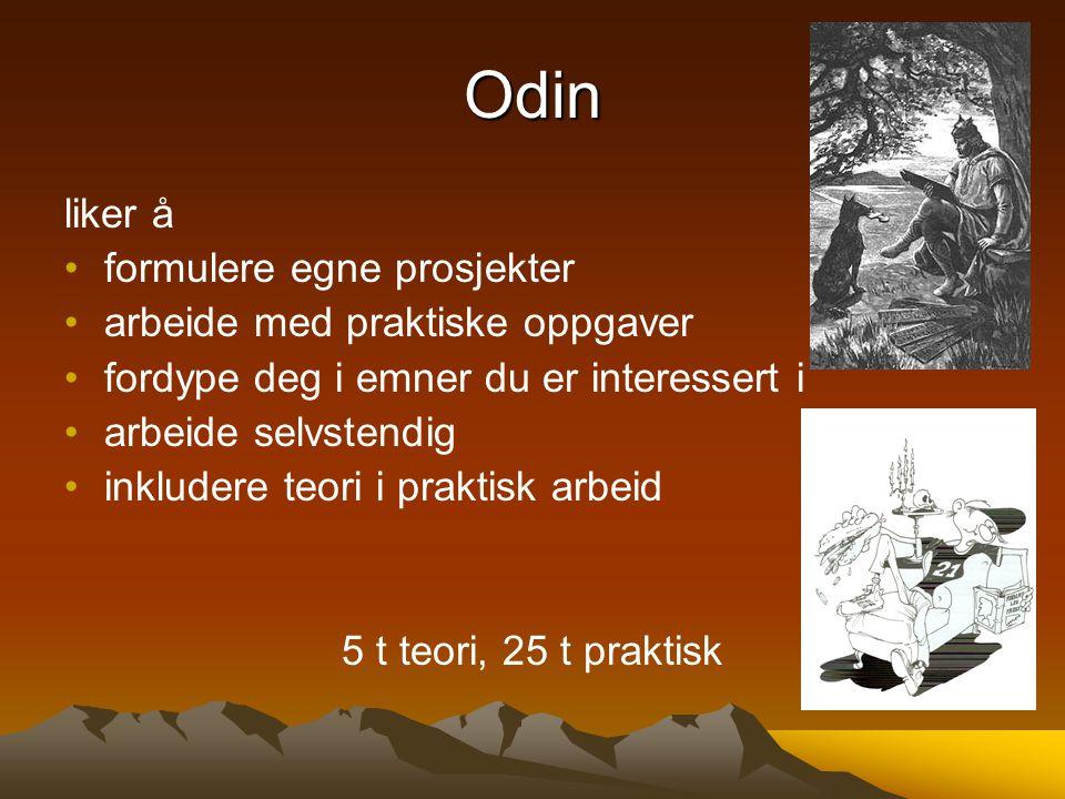Odin liker å formulere egne prosjekter arbeide med praktiske oppgaver fordype deg i emner du er interessert i arbeide selvstendig inkludere teori i pr