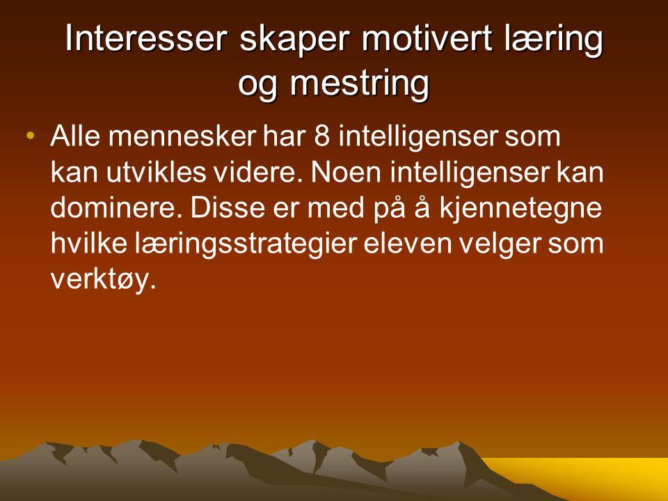 8 intelligenser Sosial intelligens Personlig intelligens Kunstnerisk intelligens Matematisk- Logisk intelligens Språklig intelligens Naturalistisk intelligens Musikalsk intelligens Kroppslig intelligens