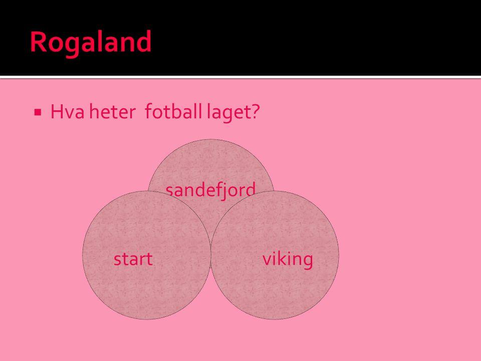  Hva heter fotball laget? sandefjord vikingstart