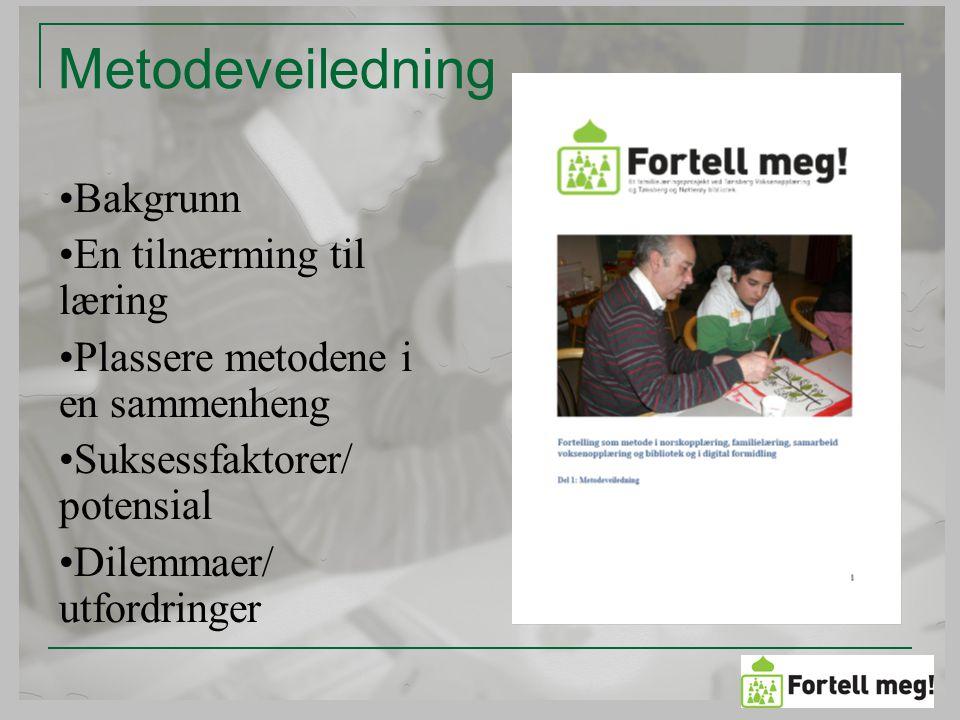 Metodeveiledning Bakgrunn En tilnærming til læring Plassere metodene i en sammenheng Suksessfaktorer/ potensial Dilemmaer/ utfordringer