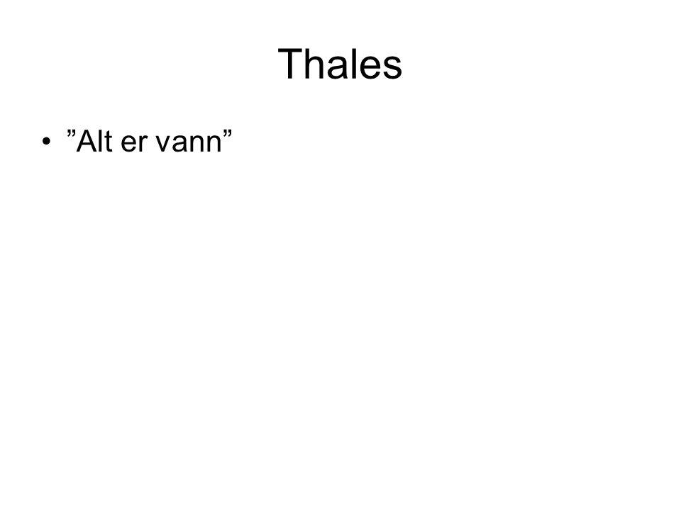 "Thales ""Alt er vann"""