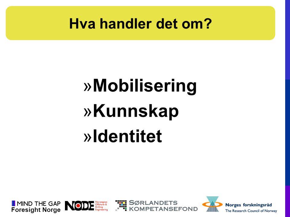 Foresight Norge »Mobilisering »Kunnskap »Identitet Hva handler det om?