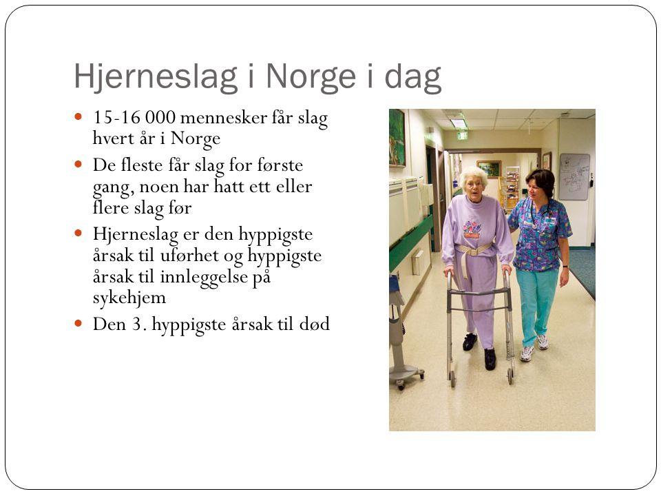 Hjerneslag i Norge i dag 15-16 000 mennesker får slag hvert år i Norge De fleste får slag for første gang, noen har hatt ett eller flere slag før Hjer